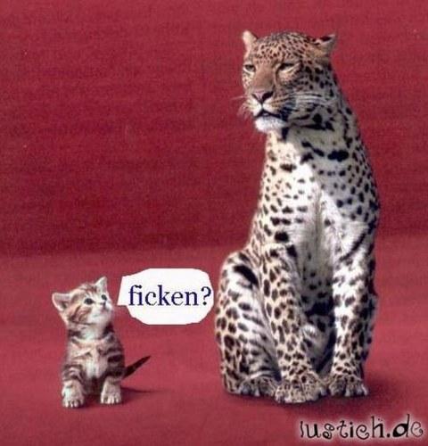 Wer ficken will, muss freundlich sein | Werbung | Was is hier eigentlich los? | wihel.de