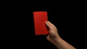 Field Notes: Red Blooded | Mädchenkram | Was is hier eigentlich los? | wihel.de