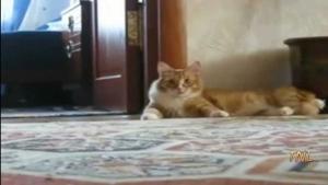 Reisebericht: Cappadocia | Awesome | Was is hier eigentlich los?