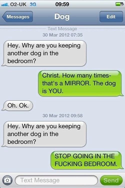 Messages from a dog