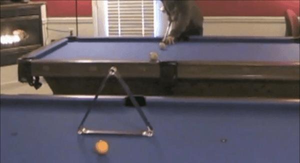 Impossible Pool Trickshots 2012