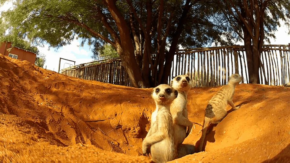 Timelapse: Namibia | Timelapse | Was is hier eigentlich los? | wihel.de