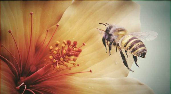 Extrem detailliert - Eine animierte Biene