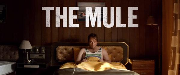 Trailer: The Mule | Kino/TV | Was is hier eigentlich los? | wihel.de