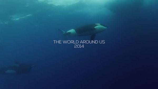 2014: The world around us | Geschichten aus'm Alltag | Was is hier eigentlich los?