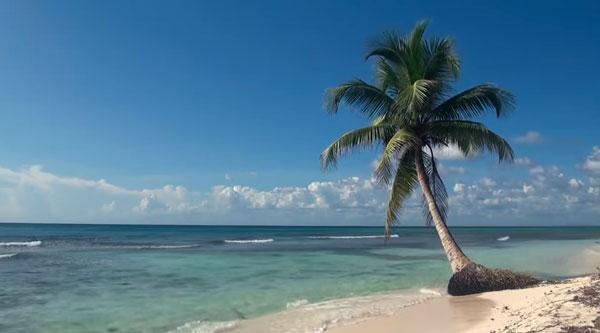 3 Stunden Karibik