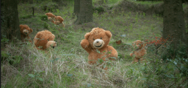 Wo die Teddy-Bären eigentlich herkommen