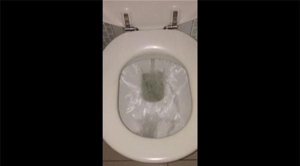 Neulich, in einer australischen Toilette | WTF | Was is hier eigentlich los? | wihel.de