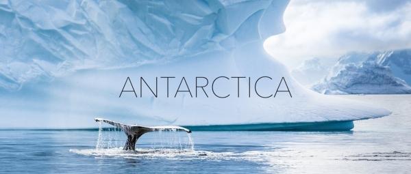 Antarktika von seiner schönsten Seite