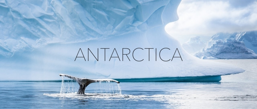 Antarktika von seiner schönsten Seite | Travel | Was is hier eigentlich los?