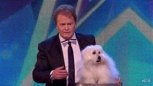 Wendy - Der sprechende Hund von Marc Métral | Awesome | Was is hier eigentlich los? | wihel.de