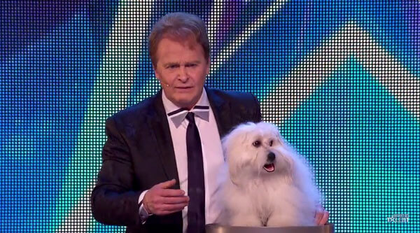 Wendy - Der sprechende Hund von Marc Métral | Awesome | Was is hier eigentlich los?
