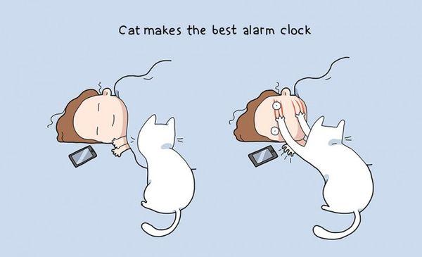 Katzen sind offenbar doch zu gebrauchen - Illustrationen von Landysh Akhmetzyanova | Design/Kunst | Was is hier eigentlich los?