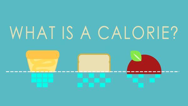 Was sind eigentlich Kalorien | Was gelernt | Was is hier eigentlich los? | wihel.de