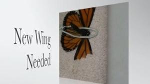 Wie man Schmetterlinge repariert | Was gelernt | Was is hier eigentlich los?