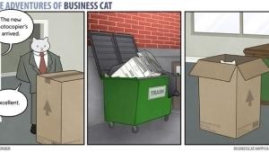 Eine Katze als Chef | Lustiges | Was is hier eigentlich los? | wihel.de
