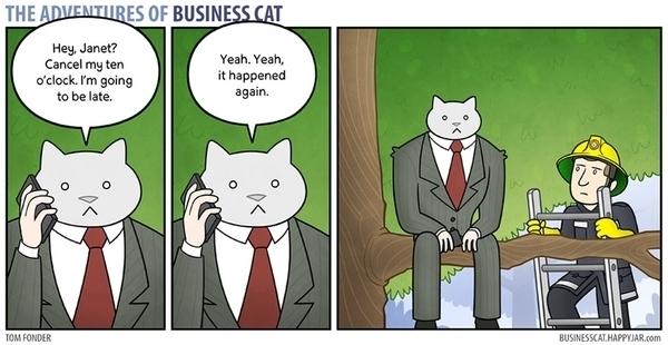 Eine Katze als Chef | Lustiges | Was is hier eigentlich los?