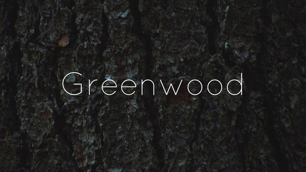 Vom Baum zum Hocker: Greenwood