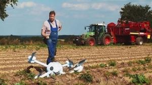 Die schlauesten Bauern haben die stärksten Kartoffeln | Essen und Trinken | Was is hier eigentlich los? | wihel.de