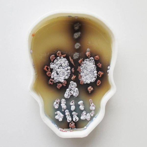 Mit Bakterien malen | Design/Kunst | Was is hier eigentlich los? | wihel.de