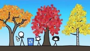 Warum das Laub im Herbst nicht grün ist | Was gelernt | Was is hier eigentlich los? | wihel.de