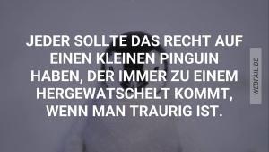 Jeder sollte einen Pinguin haben | Lustiges | Was is hier eigentlich los? | wihel.de