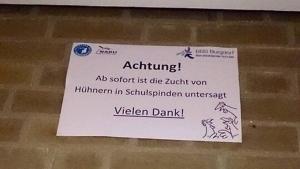 Was Hühner mit Schulspinden zu tun haben | WTF | Was is hier eigentlich los? | wihel.de