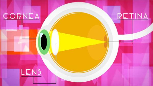 Wie funktionieren eigentlich Brillen und Kontaktlinsen? | Was gelernt | Was is hier eigentlich los?