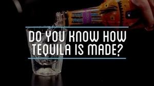 Wie Tequila gemacht wird | Was gelernt | Was is hier eigentlich los?