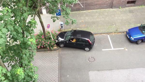 Immer wieder: Einparken will gelernt sein | WTF | Was is hier eigentlich los? | wihel.de