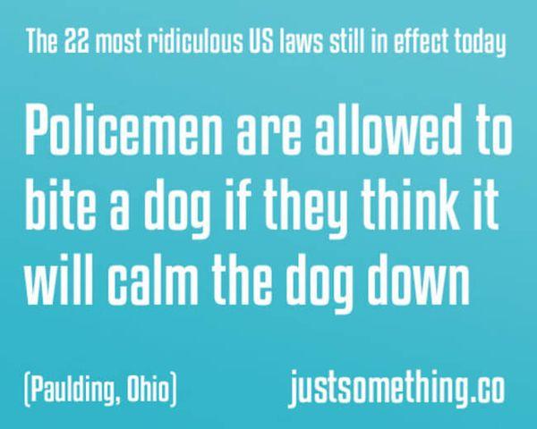 Mal wieder: Dumme Gesetze, die keiner braucht | WTF | Was is hier eigentlich los?