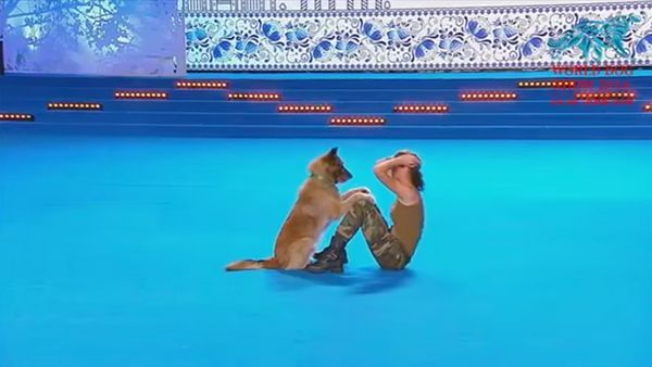 Die Dog Dance World Championship 2016 | Awesome | Was is hier eigentlich los?