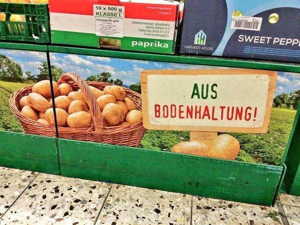 Kartoffeln aus Bodenhaltung | Lustiges | Was is hier eigentlich los?