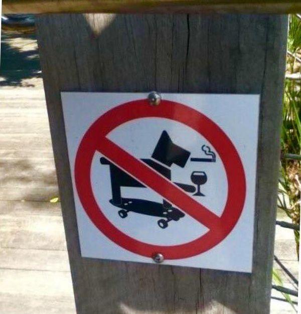 Der coolste Hund der Welt muss leider draußen bleiben | Lustiges | Was is hier eigentlich los?