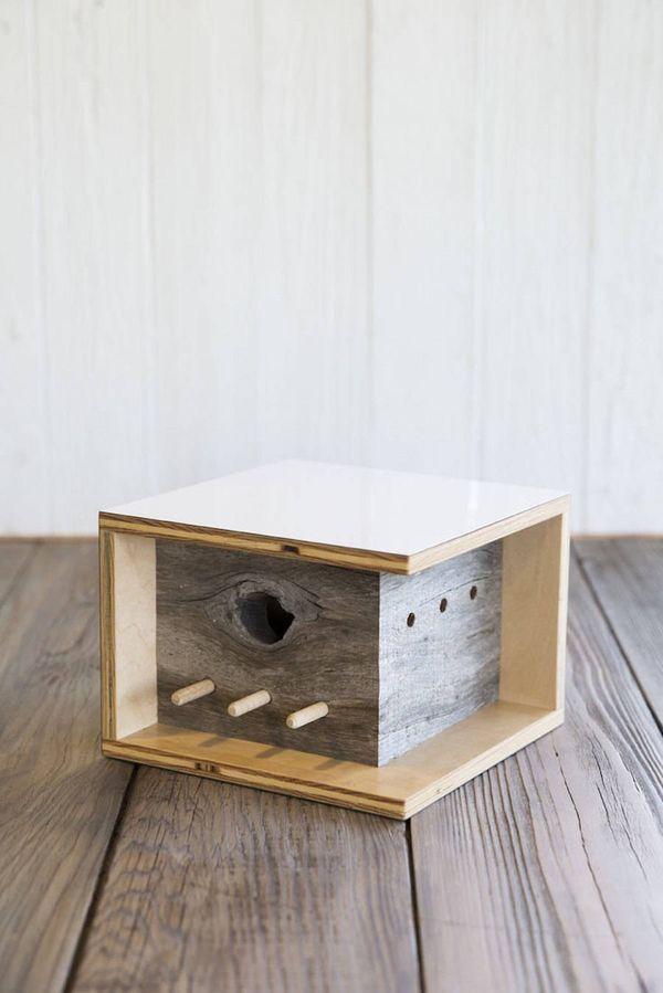 Moderne Vogelhäuschen-Architektur | Design/Kunst | Was is hier eigentlich los?