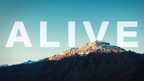 Kurzfilm und Travel-Video: Alive | Travel | Was is hier eigentlich los?