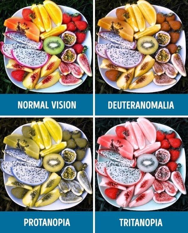 Wie man sieht, wenn man farbenblind ist | Was gelernt | Was is hier eigentlich los?