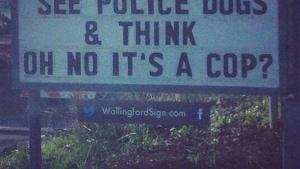 Was denkt ein Hund, wenn er einen Polizeihund sieht? | Lustiges | Was is hier eigentlich los? | wihel.de