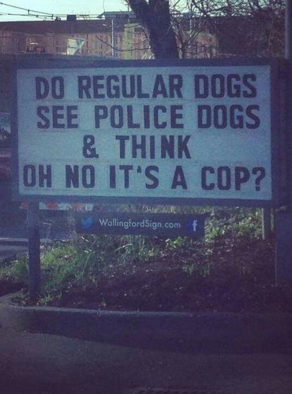Was denkt ein Hund, wenn er einen Polizeihund sieht? | Lustiges | Was is hier eigentlich los?
