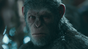 Trailer: War for the Planet of the Apes | Kino/TV | Was is hier eigentlich los? | wihel.de