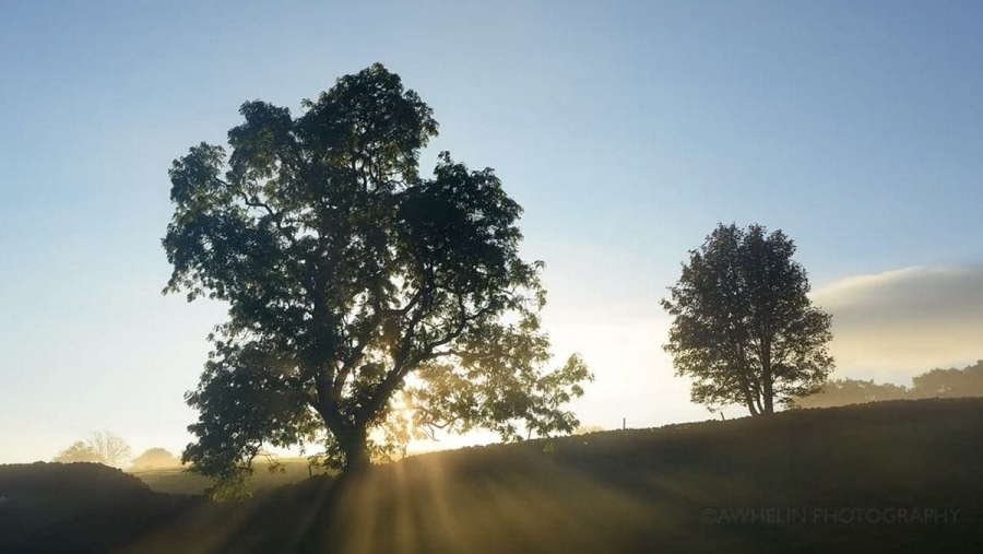 Timelapse: Earth Song | Timelapse | Was is hier eigentlich los?