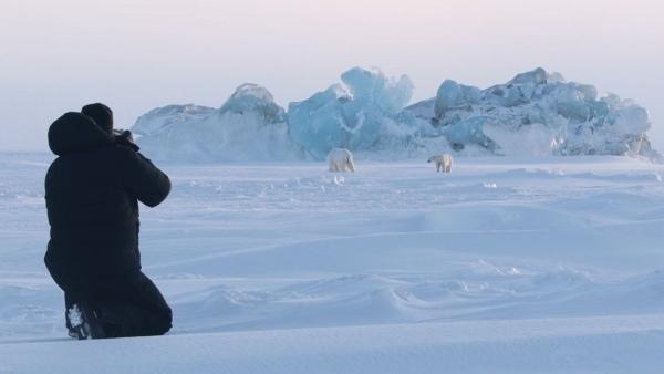 Ghosts of the Arctic - Auf der Suche nach Polarbären | Travel | Was is hier eigentlich los? | wihel.de