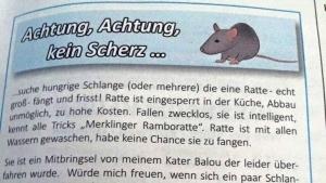 Rattenfänger gesucht | Lustiges | Was is hier eigentlich los?