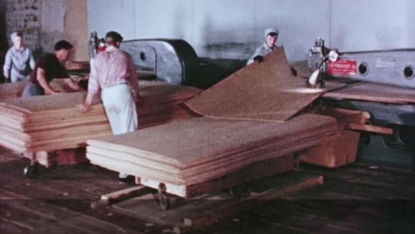 Die Herstellung von Sperrholzplatten | Handwerk | Was is hier eigentlich los?