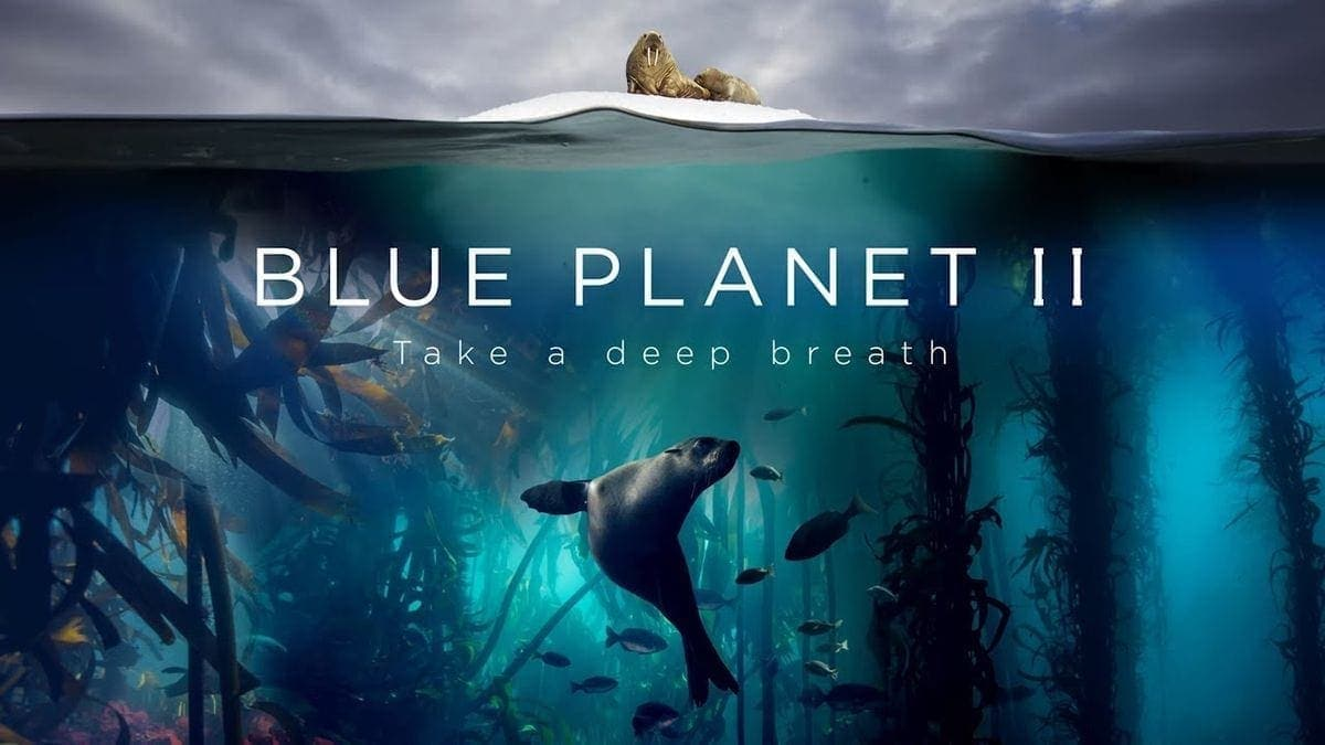 Trailer: Blue Planet 2 | Awesome | Was is hier eigentlich los?