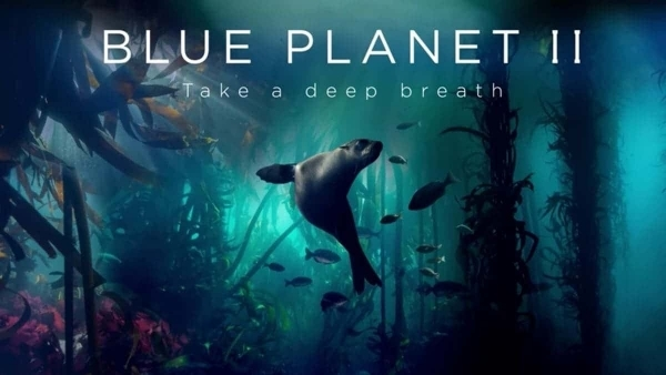 2. Trailer: Blue Planet II | Was gelernt | Was is hier eigentlich los?