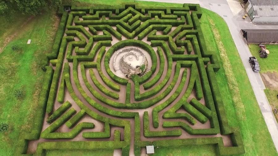 Der Labyrinth-Ertüftler Adrian Fischer   Menschen   Was is hier eigentlich los?