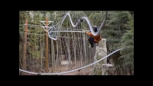 Eine Zipline-Achterbahn in Aktion | WTF | Was is hier eigentlich los? | wihel.de