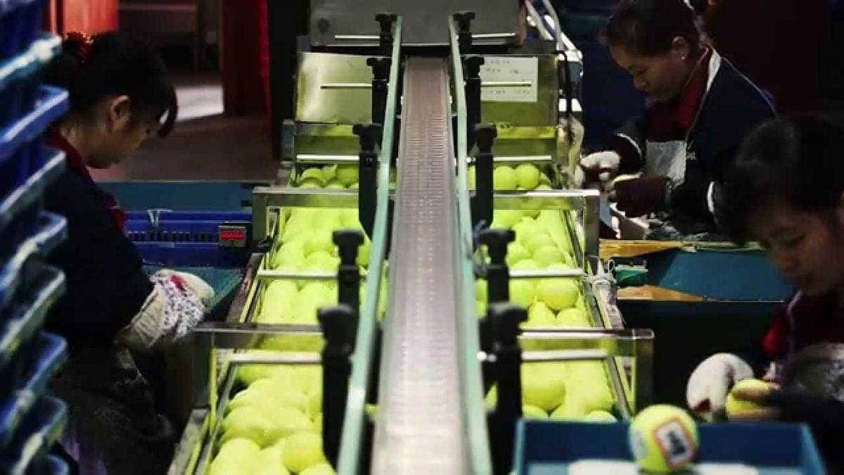 Wie Tennisbälle in China hergestellt werden | Was gelernt | Was is hier eigentlich los?