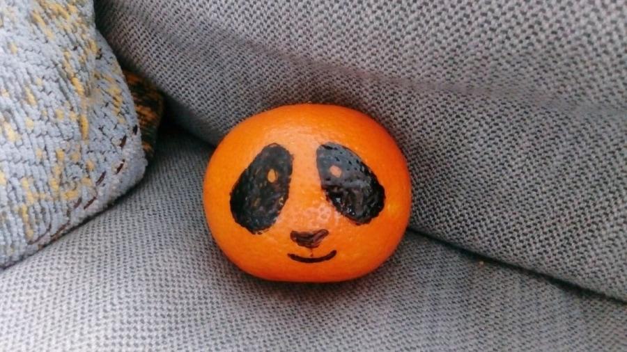 Eine Pandarine | Lustiges | Was is hier eigentlich los?